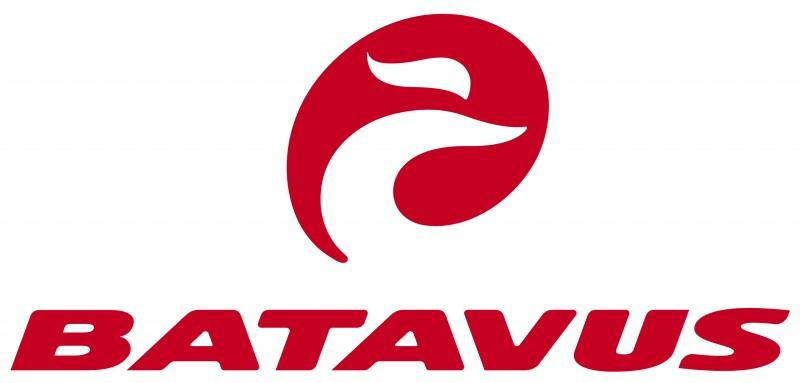 producten review e-bikes voor meisjes batavus