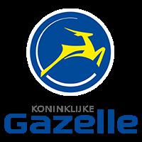 producten review e-bikes voor meisjes gazelle